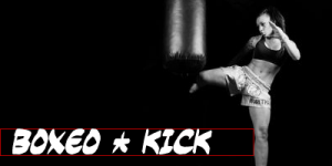 Artes marciales Boxeo Bodhidharma