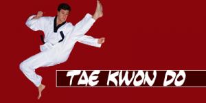 Artes Marciales Taekwondo Bodhidharma