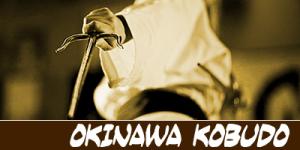 artes marciales kobudo Bodhidharma