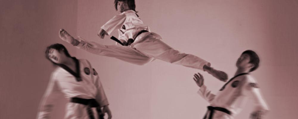 Taekwondo Bodhidharma